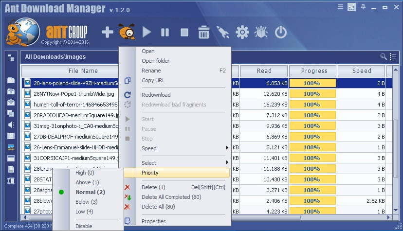 Ant Download Manager Pro Serial Keys